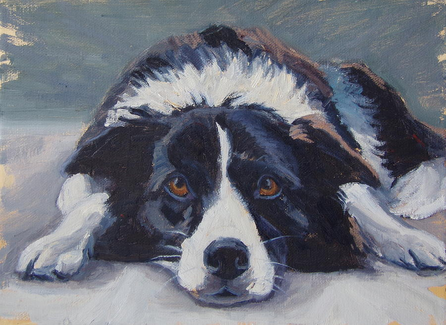 Border Collies Painting - Slick by Michelle Murphy-Ferguson