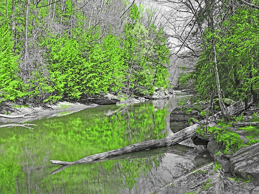 Slippery Rock Creek In Spring by Digital Photographic Arts
