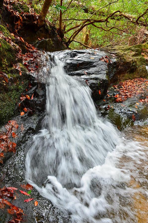 Slippery Rock Falls Fdr State Park Ga Photograph