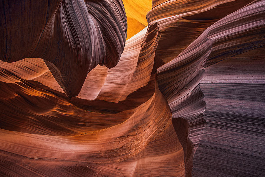 Slot Canyons Photograph - Slot Canyon Colors by Dave Dilli