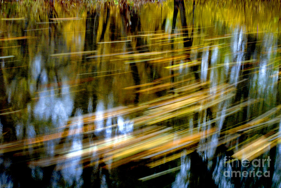 Water Photograph - Slow Moving Stream - 2959 by Paul W Faust -  Impressions of Light