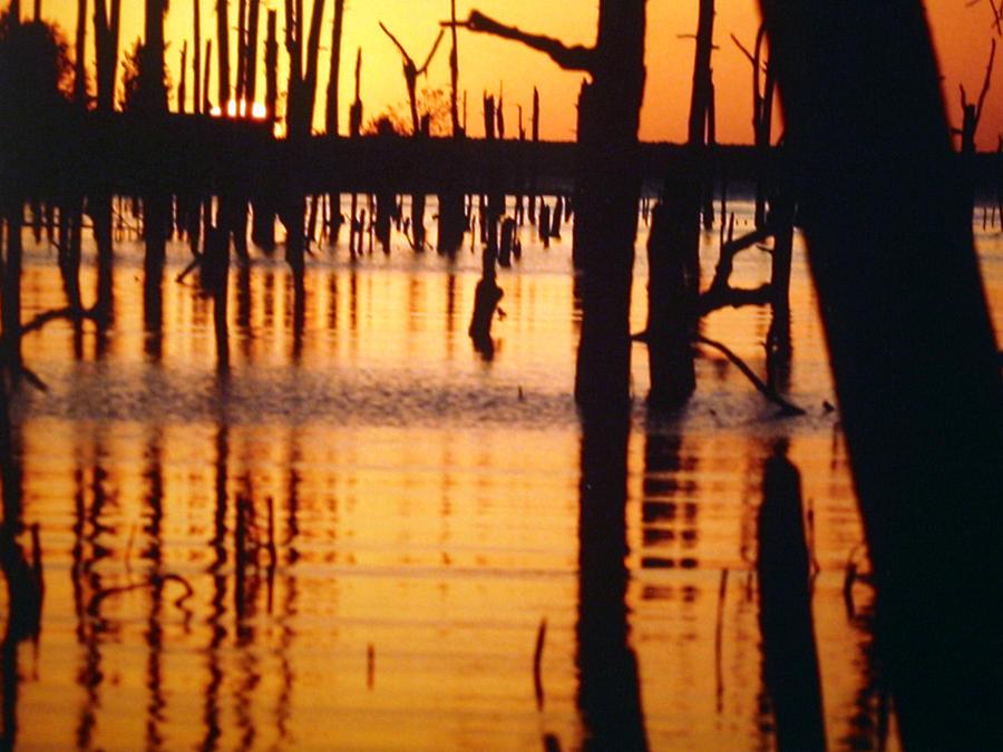 Water Pyrography - Slue Sunset by Myrna Salaun