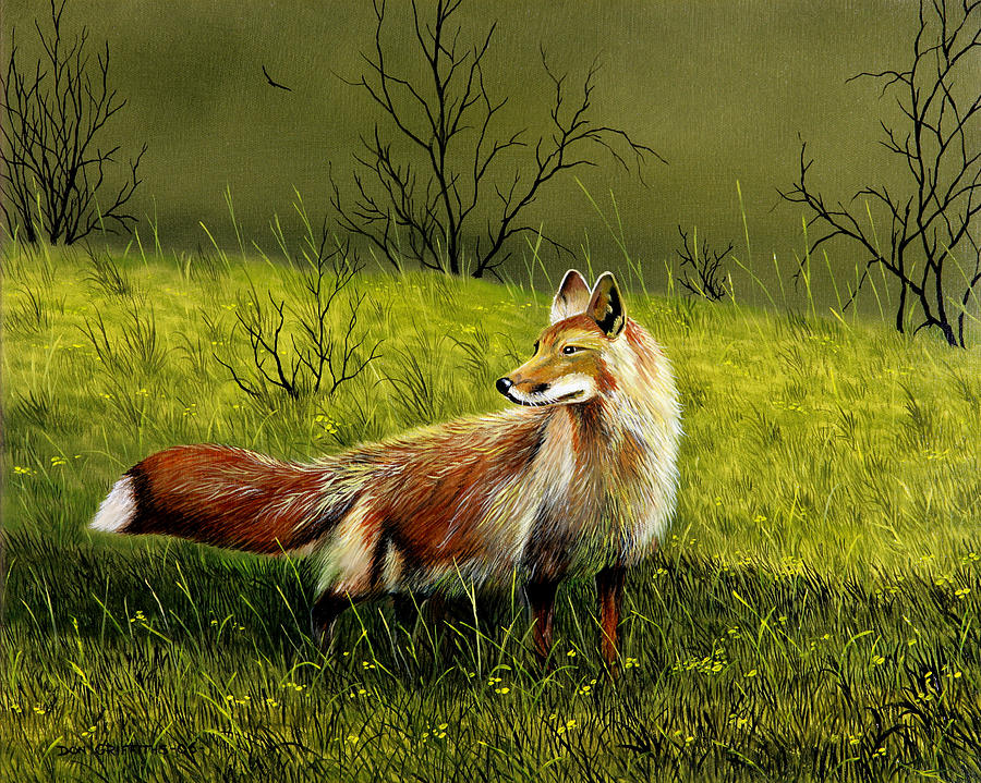 Wildlife Painting - Sly Fox by Don Griffiths