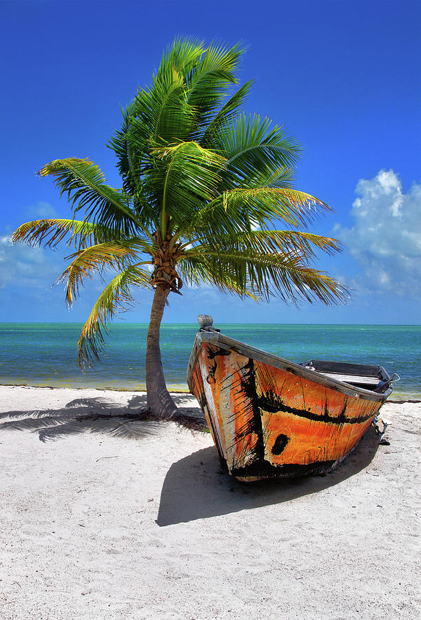 Small Boat And Palm Tree On White Sandy Beach In The