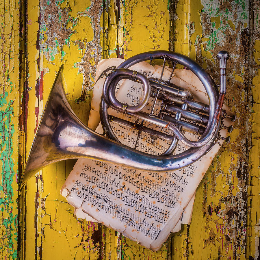 Small Photograph - Small French Horn by Garry Gay