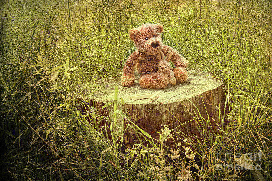 Small Little Bears On Old Wooden Stump  Photograph by Sandra Cunningham