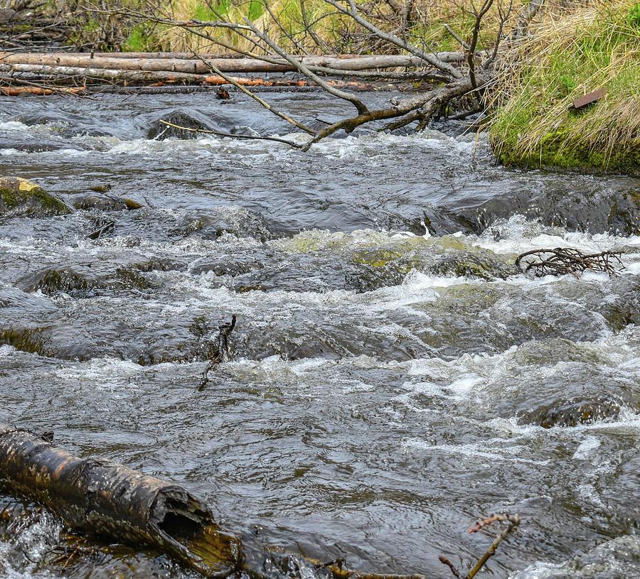 Kenai River Photograph - Small Rapids by Crewdson Photography