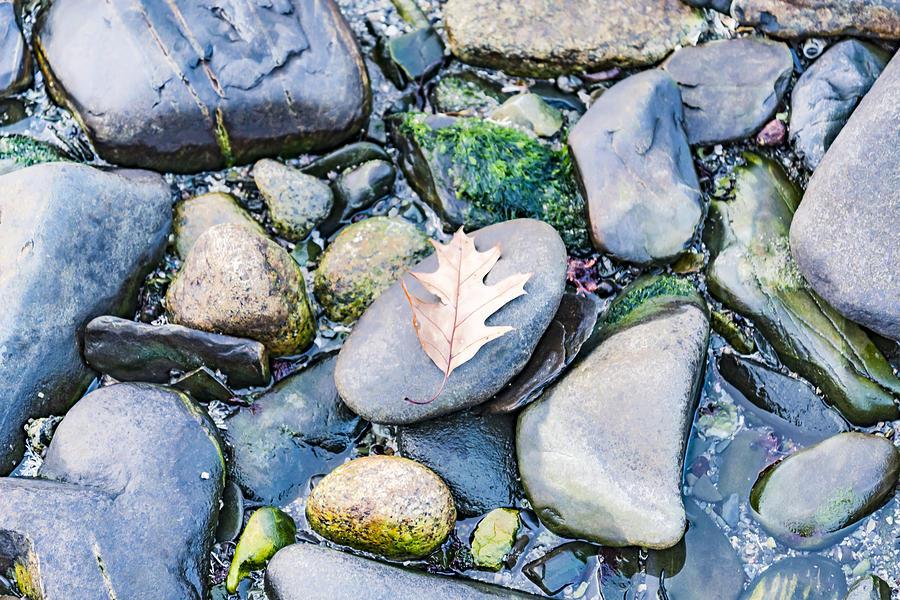Beach Photograph - Small Rocks On The Beach by Enrico Della Pietra