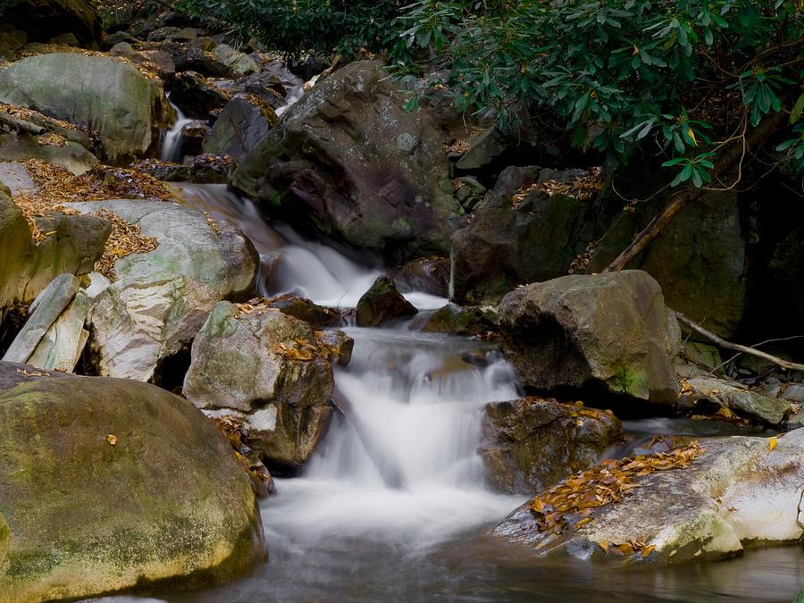 Small Stream Photograph by Bob Hahn