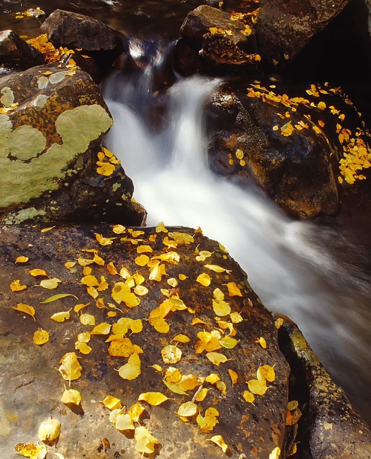 Water Photograph - Small Waterfall In Autumn by Douglas Pulsipher