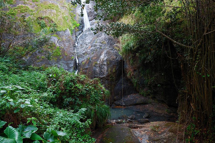 Small Waterfall by Ricardo J Ruiz de Porras
