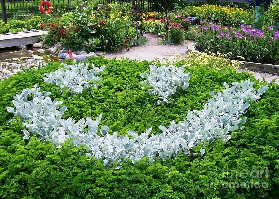 Shrub Photograph - Smiley Face Garden Too by Laurie Eve Loftin