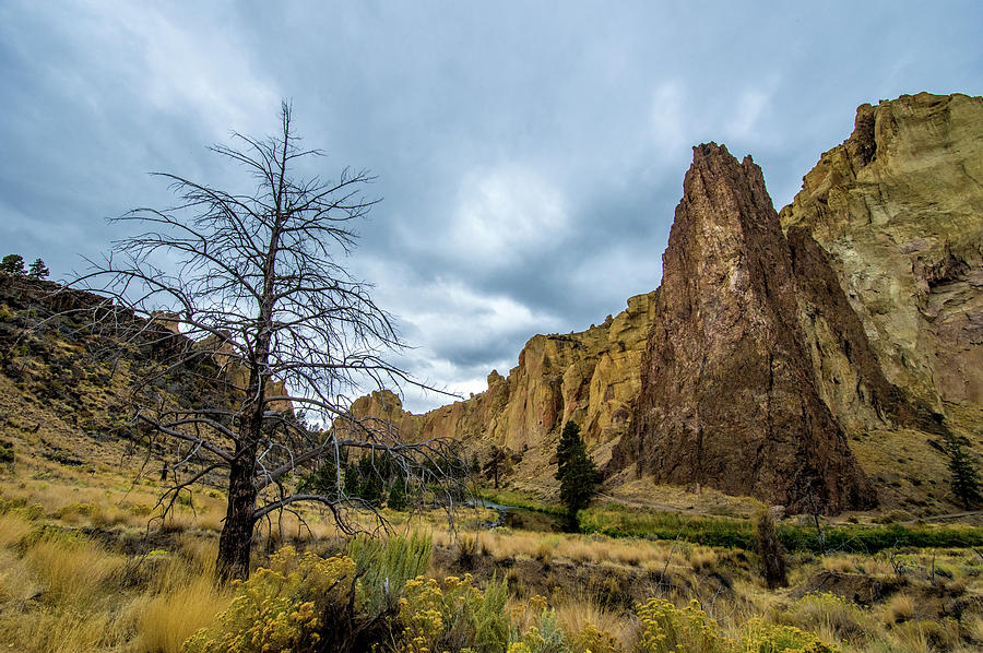 Smith Rock State Park by Jedediah Hohf