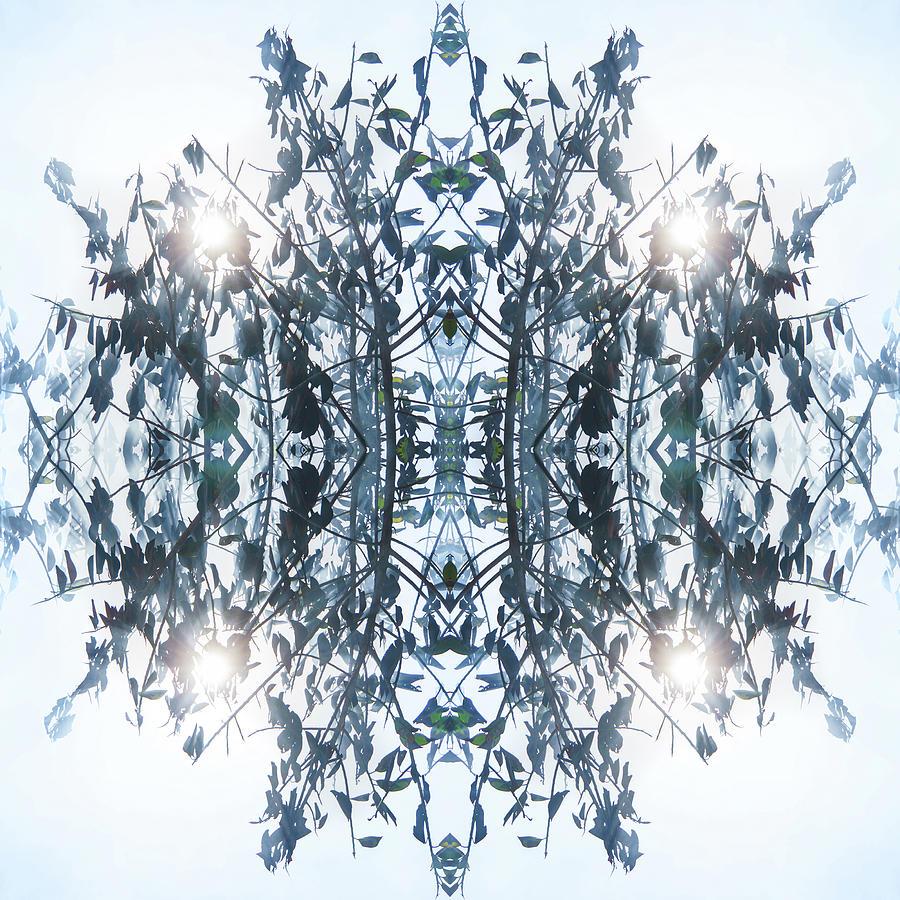 Enlightening Tree I Digital Art