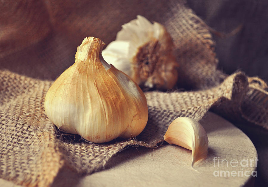 Garlic Photograph - Smoked Garlic by Lyn Randle