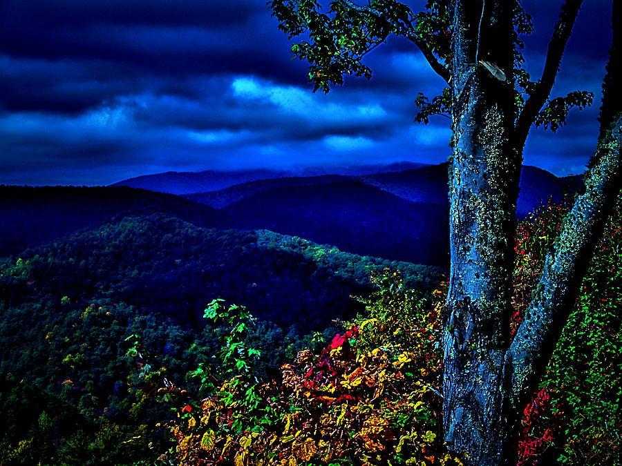 Smokey Mountains Photograph - Smokey Mountain Still Life by William Jones