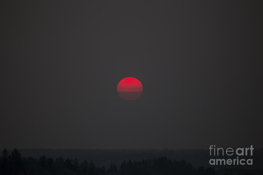 Landscape Photograph - Smokey Red Sun by Shevin Childers