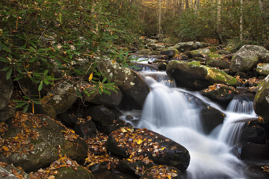 Waterfall Photograph - Smokies Stream In Autumn by Andrew Soundarajan