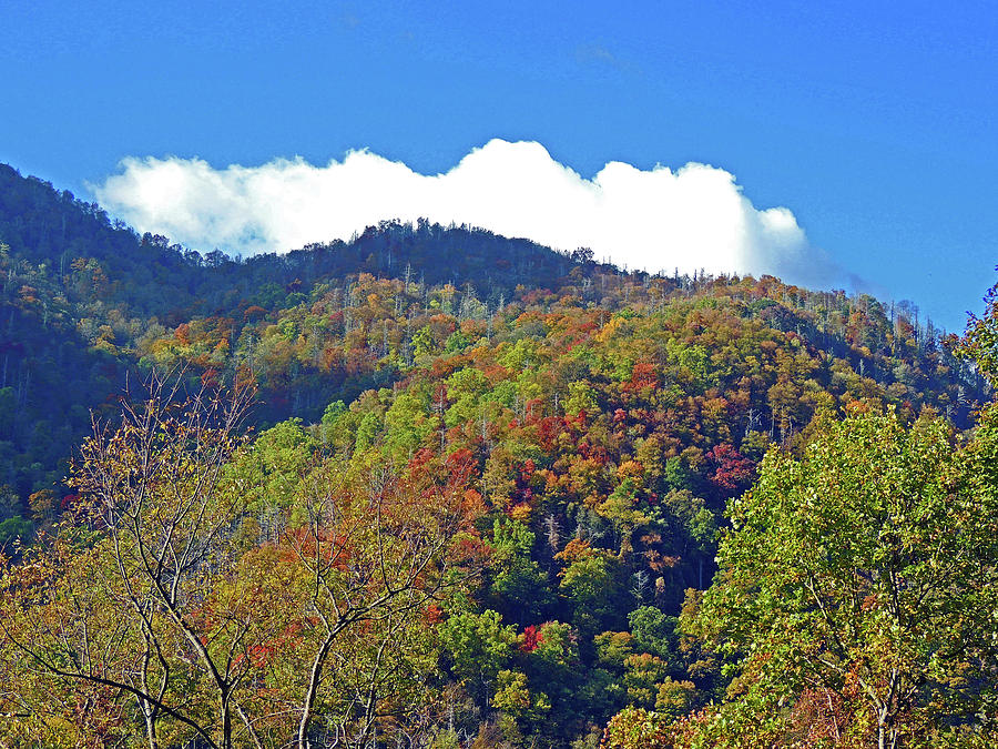 Smoky Mountains Photograph - Smoky Mountain Scenery 6 by Marian Bell