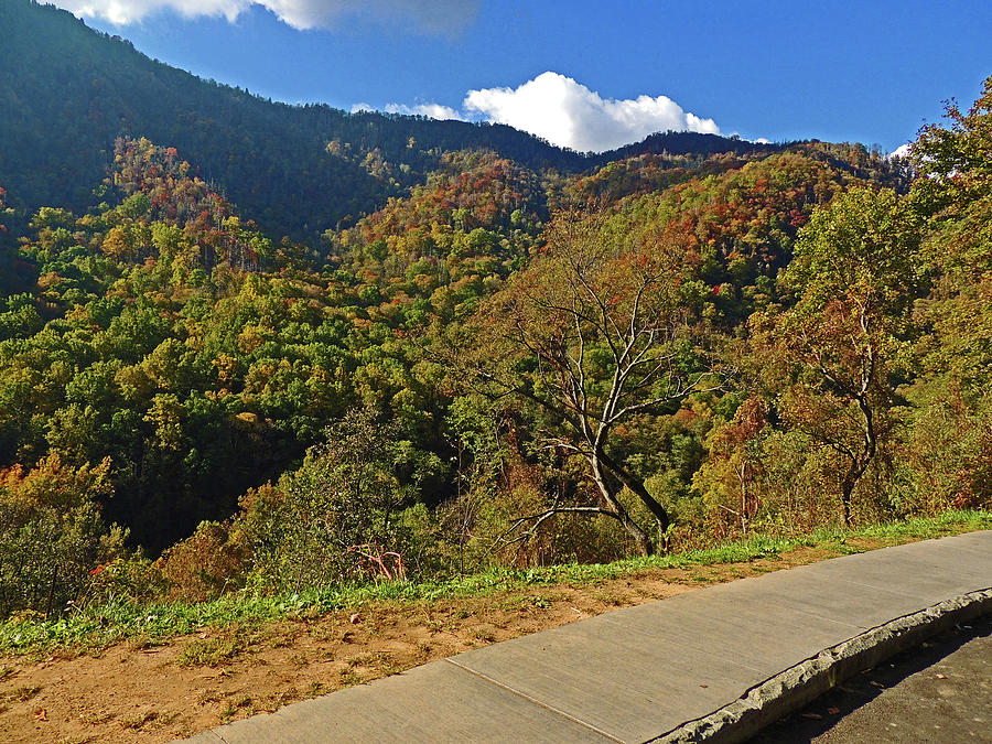 Smoky Mountains Photograph - Smoky Mountain Scenery 8 by Marian Bell
