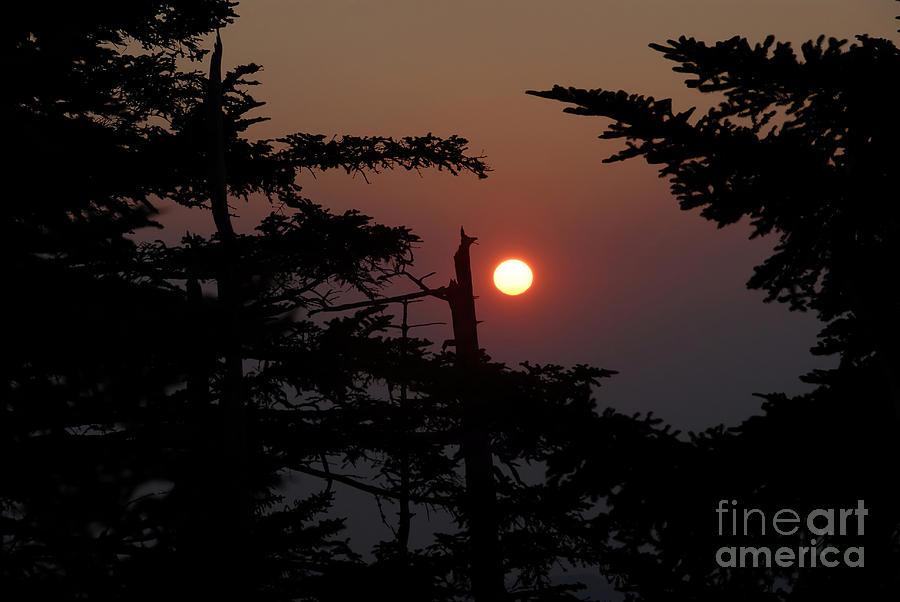 Smoky Mountain National Park Photograph - Smoky Mountain Sunset by David Lee Thompson