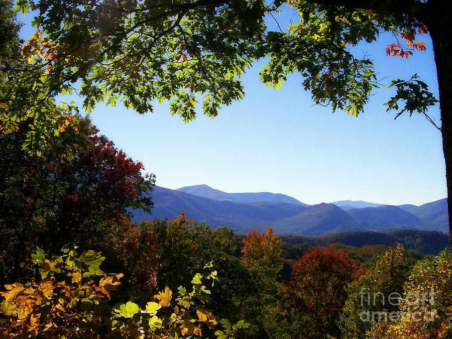 Mountains Photograph - Smoky Mountains by Lena Auxier