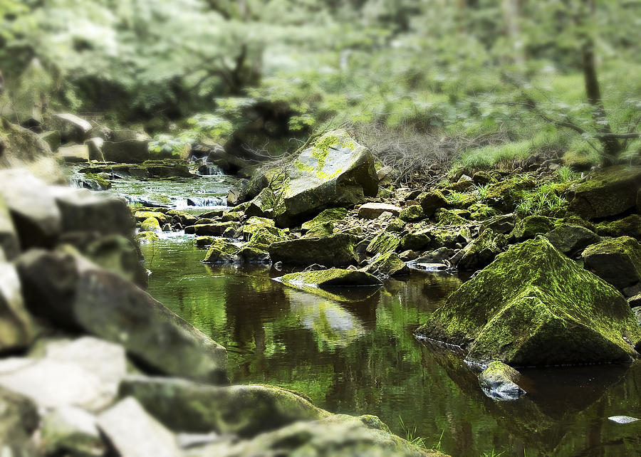3d Photograph - Smooth by Svetlana Sewell