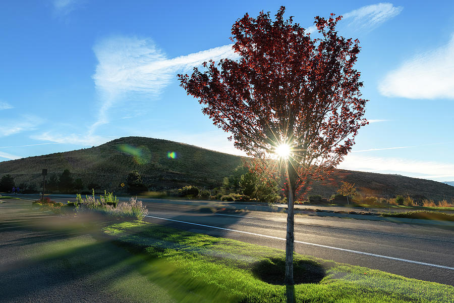Smoothed Over, Autumn Sunset Through Red Foliage, Mountains, Blue Sky, Green Grass, Double Exposure Photograph
