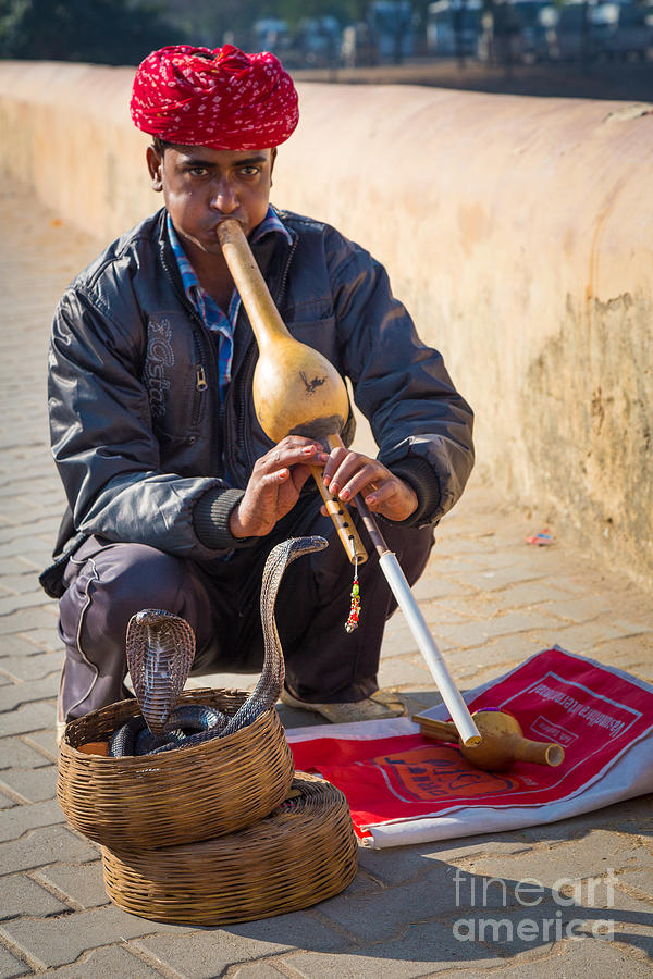 Amber Fort Photograph - Snake Charmer by Inge Johnsson