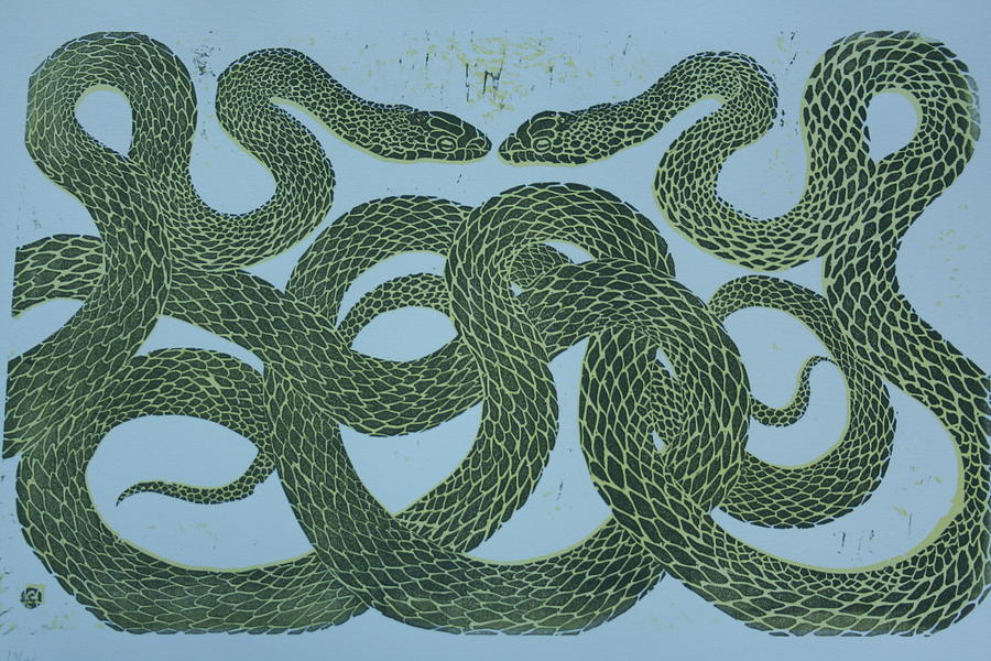 Nature Mixed Media - Snake Council by Pati Hays