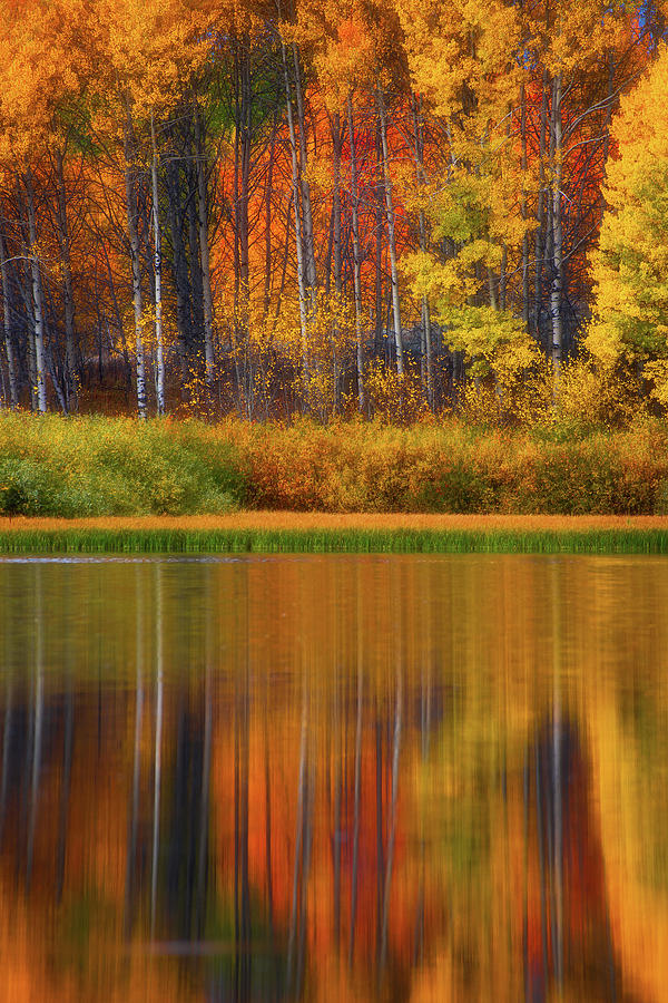 Snake River Fall Colors Photograph