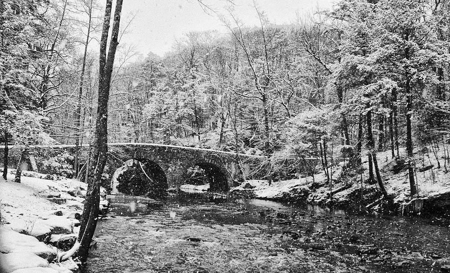 Snow Photograph - Snow Along The Wissahickon Creek by Bill Cannon