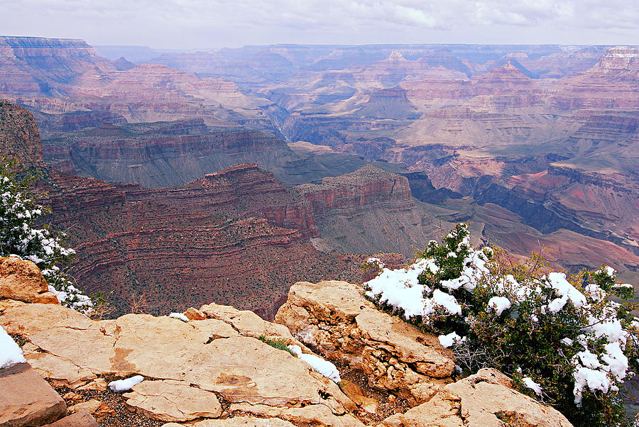 Grand Canyon National Park Photograph - Snow And Canyon - Grand Canyon by Larry Ricker