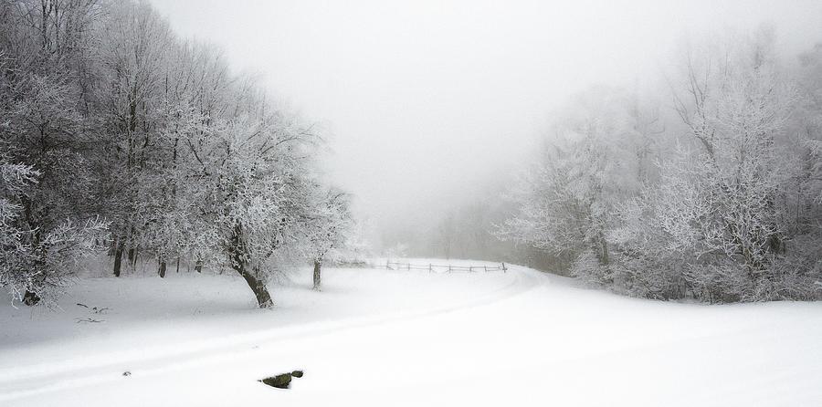 Snow Bound 2014 Photograph