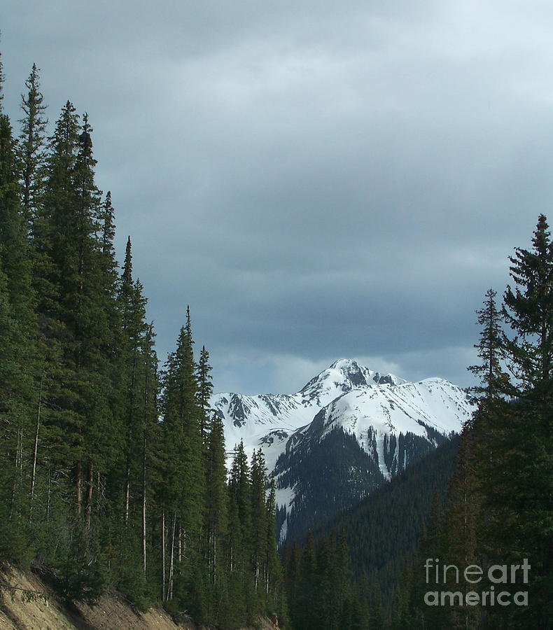 Snow Photograph - Snow Capped Mountains by Sherry Vance