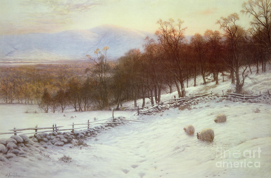 Snow Painting - Snow Covered Fields With Sheep by Joseph Farquharson
