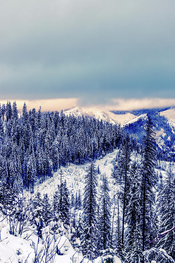 Idaho Photograph - Snow Covered Mountains by Lester Plank