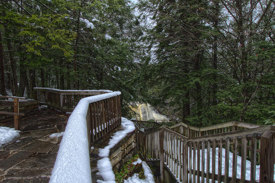 Snow Covered Path by Daniel Houghton