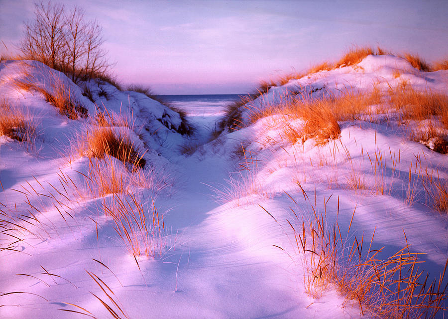 Snow Photograph - Snow Dune by Elizabeth Reynders