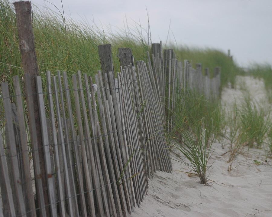 Sand Photograph - Snow Fence by Carla Neufeld