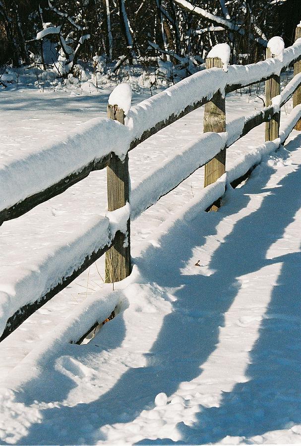 Fence Photograph - Snow Fence by Lauri Novak