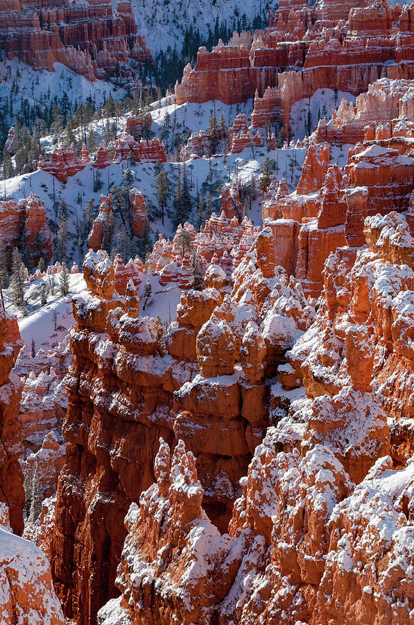 Bryce Canyon Photograph - Snow In Bryce Canyon by Jorge Moro