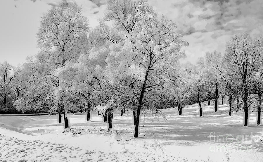 South Park Photograph - Snow In South Park by Luther Fine Art