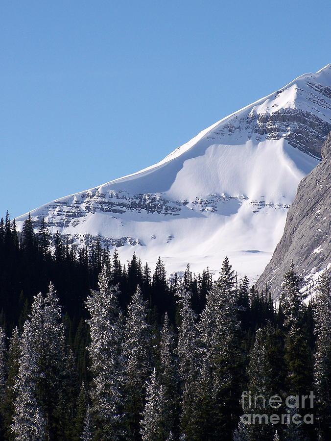 Scenic Photograph - Snow Ledge by Greg Hammond