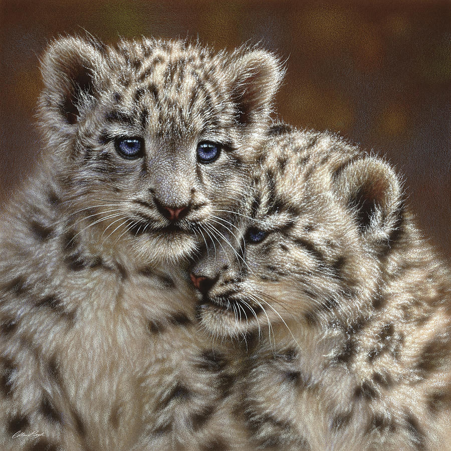Snow Mixed Media - Snow Leopard Cubs - Playmates by Collin Bogle