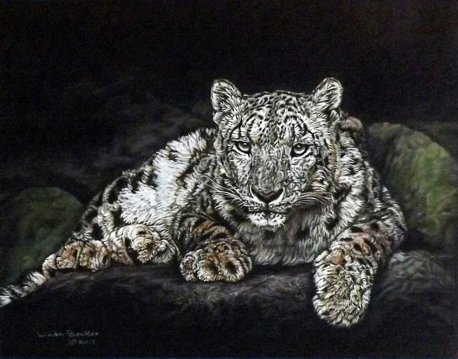 Snow Leopard by Linda Becker