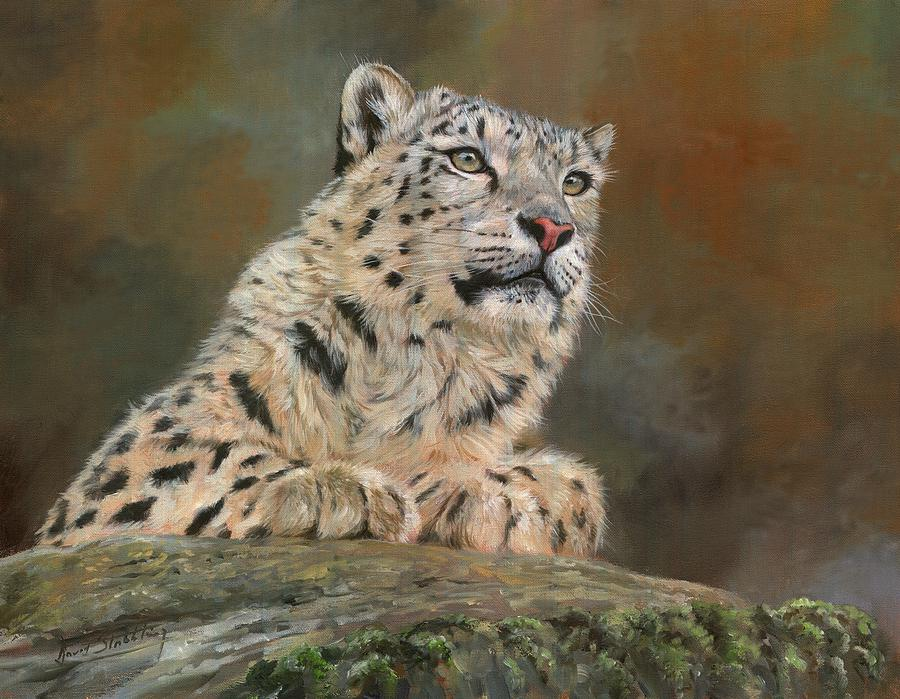 Snow Leopard On Rock Painting