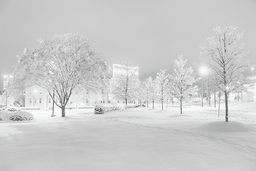 Snow on Pettigrew by Ben Shields