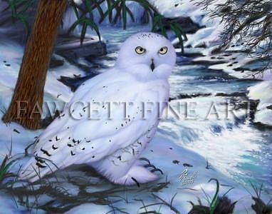 Snow Owl Digital Art by Randy Fawcett