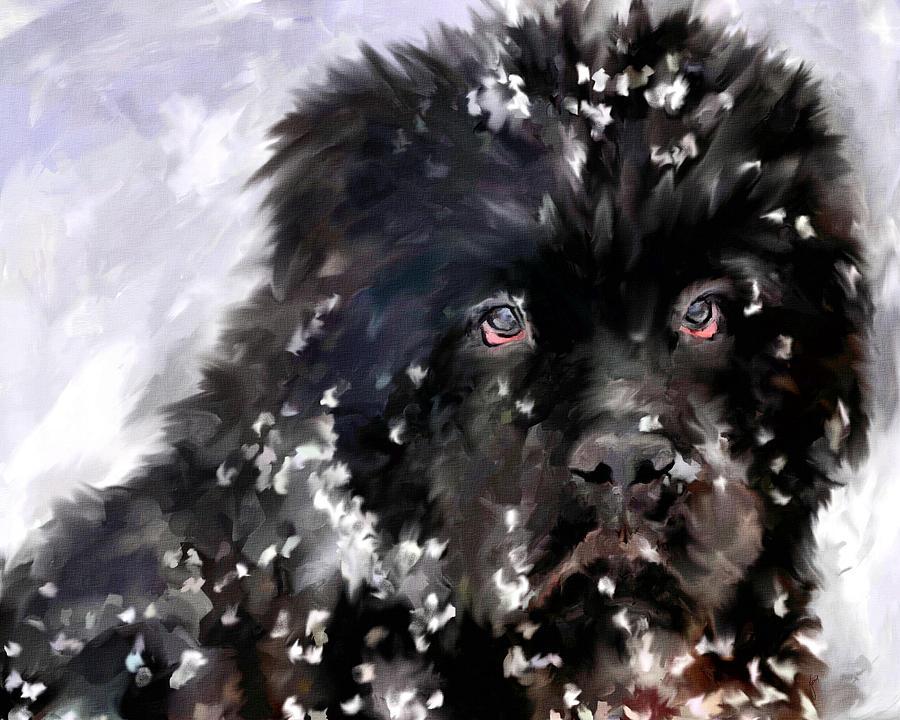 Newfoundland Painting - Snow Play by Jai Johnson